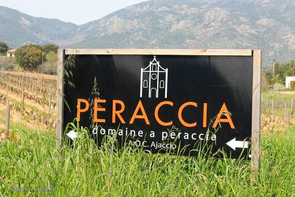 Domaine A Peraccia - Vin Bio AOP Ajaccio - Peri