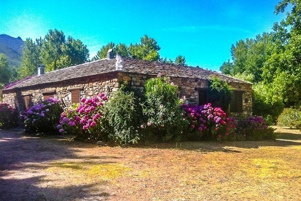 Les Jardins de Foata - Location de Gîtes à Barbaggio