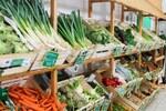 Fruits et légumes bios