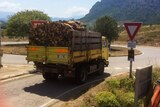 Livraison de bois de chauffage en corse