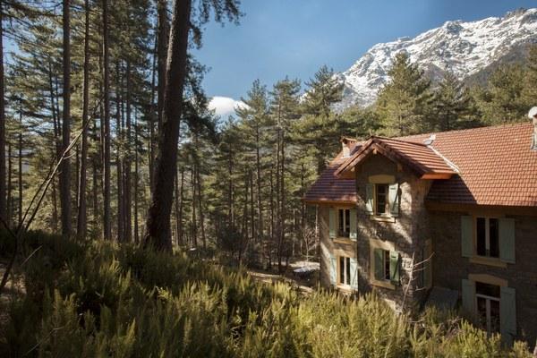 Chambres d'hôtes montagne corse casa Alta à Vivario
