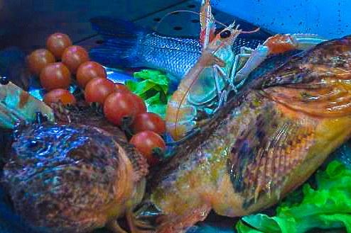 poisson chapon restaurant corse italien saint florent