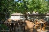 Terrasse exterieure restaurant corse a casella farinole