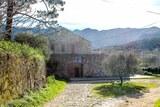 Domaine viticole maestracci