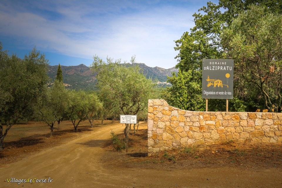 Domaine Alzipratu