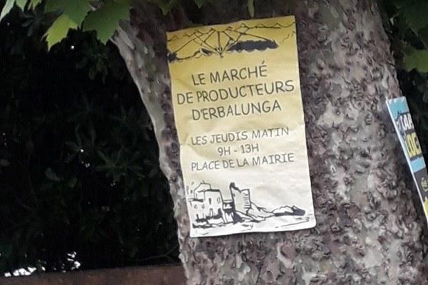 Marché d'Erbalunga - Brando