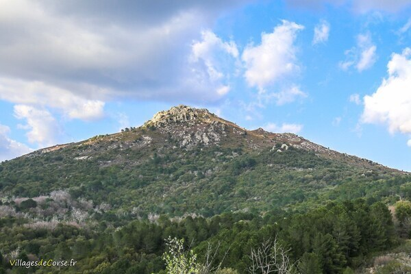 Mont - Punta a Giuvanna - Aullène
