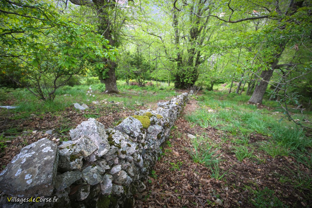 Mur - Aullène