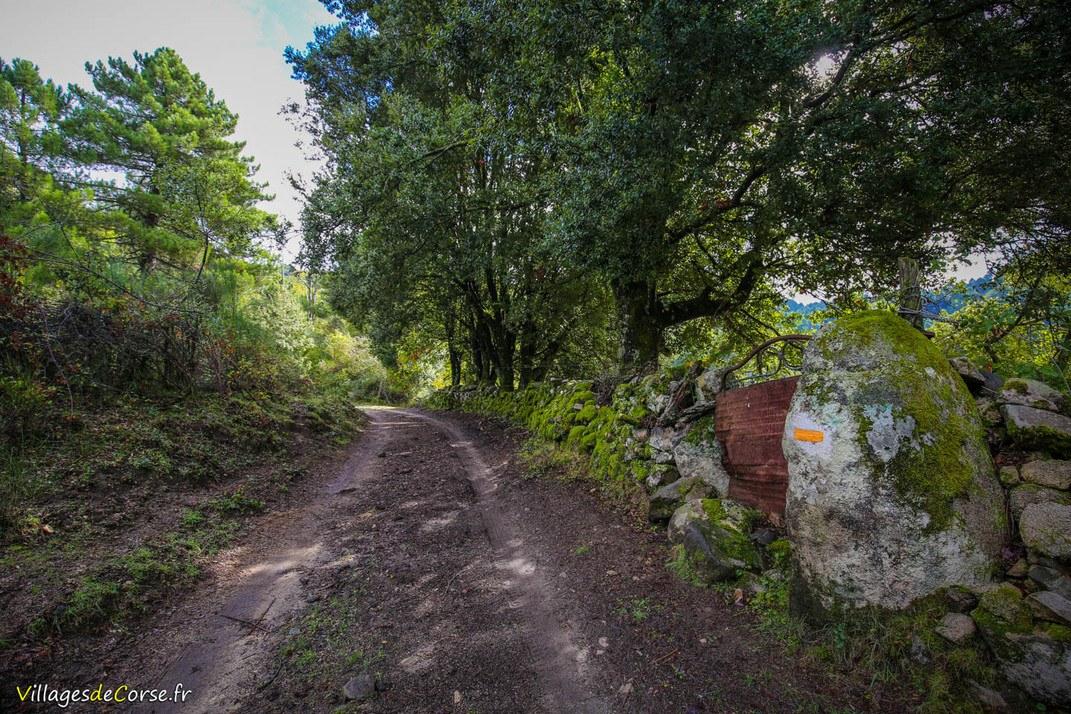 Sentier - Aullène