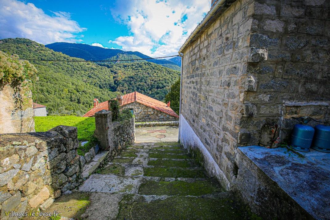 Escaliers - Loreto di Tallano