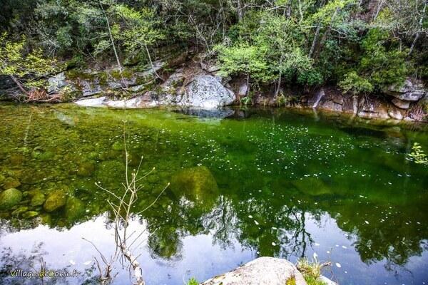 Ruisseau - Saint Antoine - Quenza