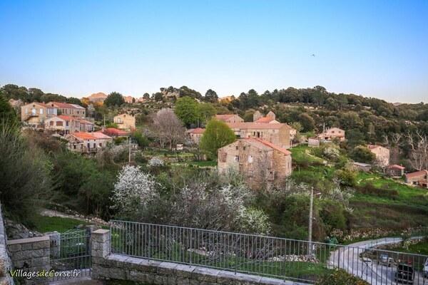 Village - Quenza