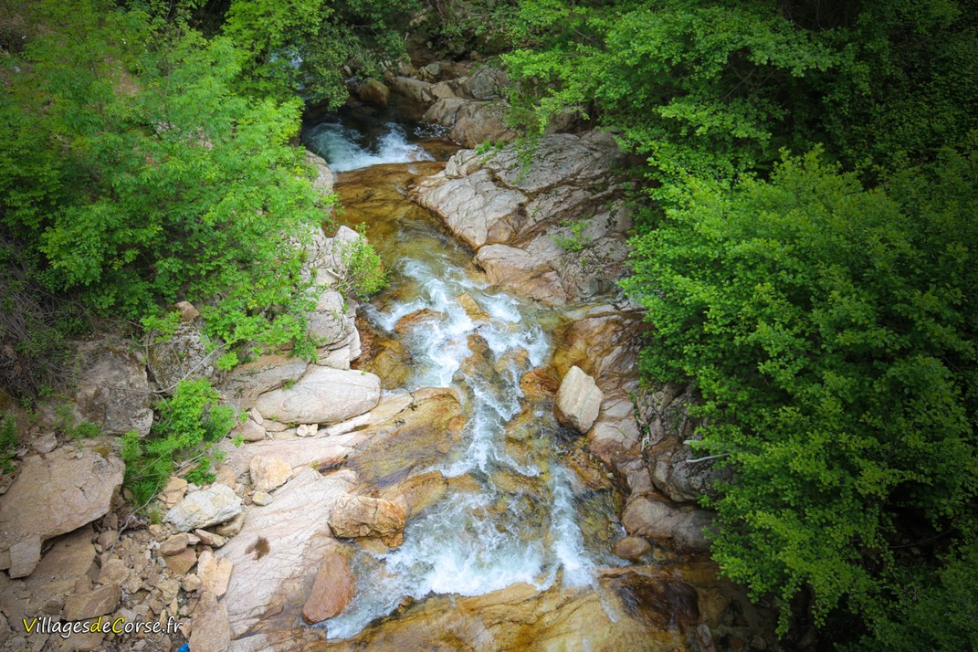 Ruisseau - Codi - Quenza