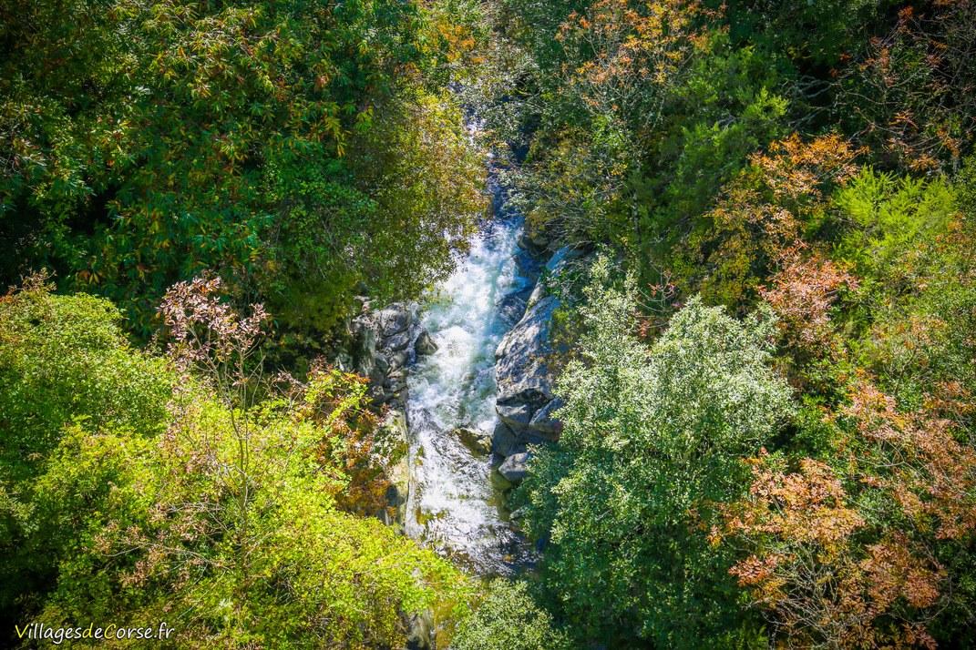 Rivière - Chiuvone - Zérubia