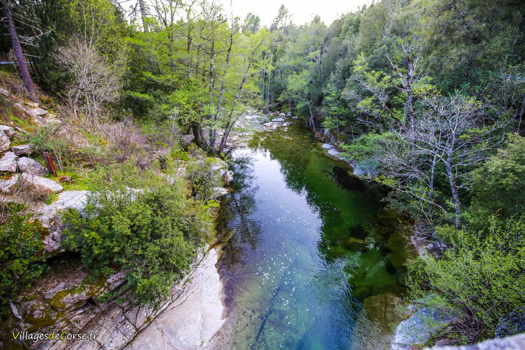 Ruisseau - Saint Antoine - Zonza