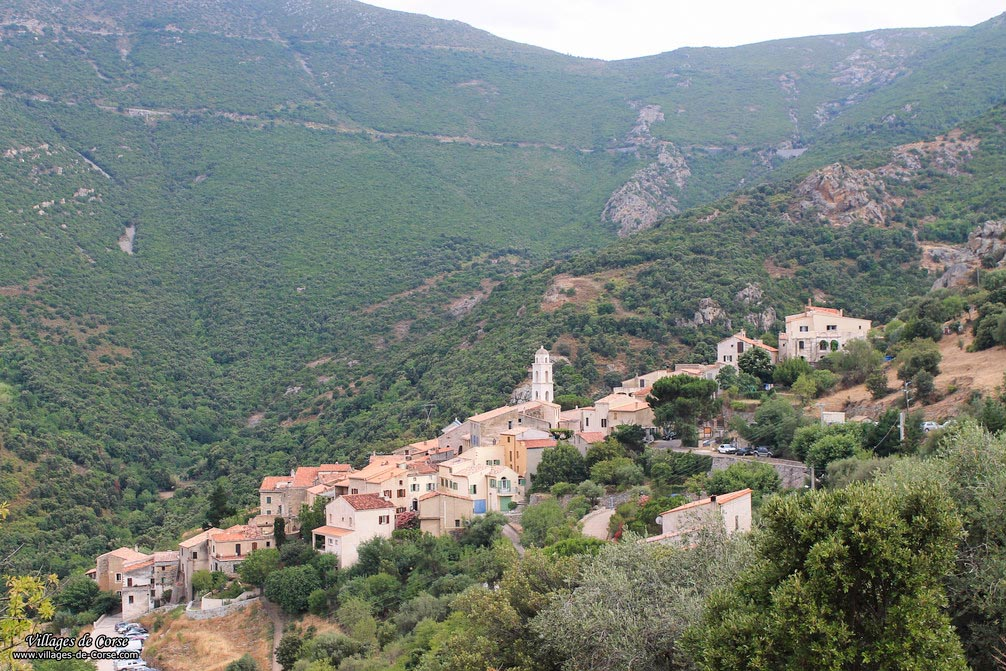 Village - Palasca