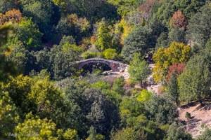 Pont Génois - Pont génois de Forcili - Pioggiola