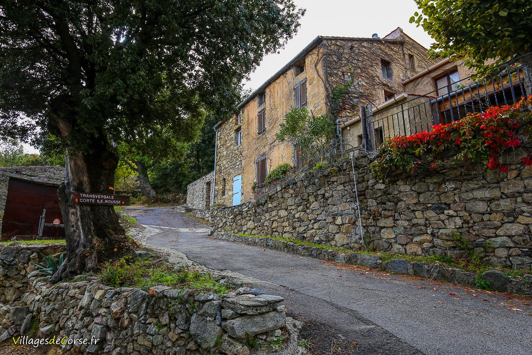 Rue - Pioggiola