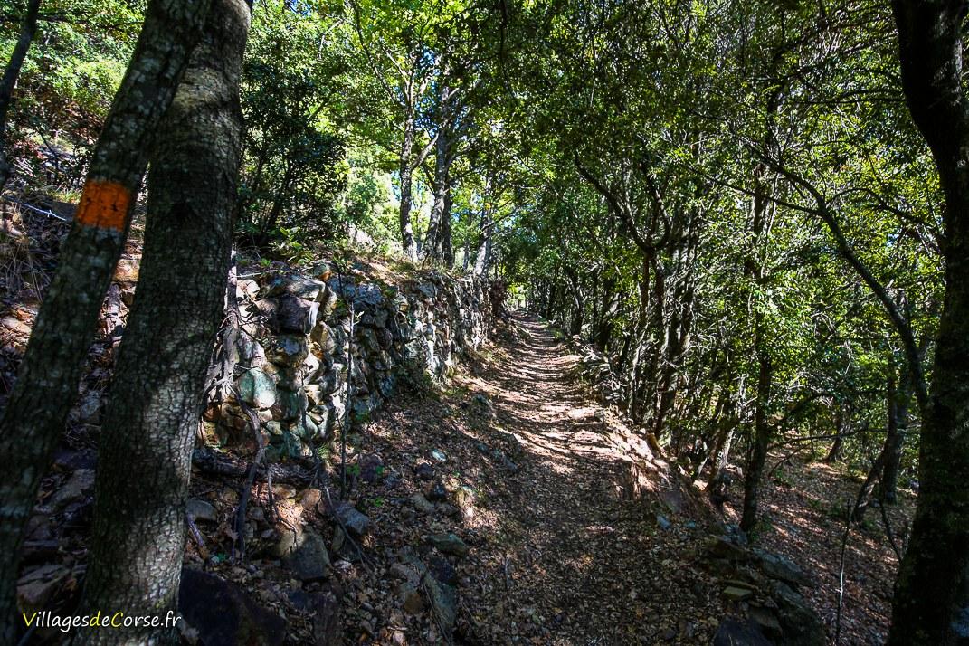 Sentier du Giussani - Pioggiola