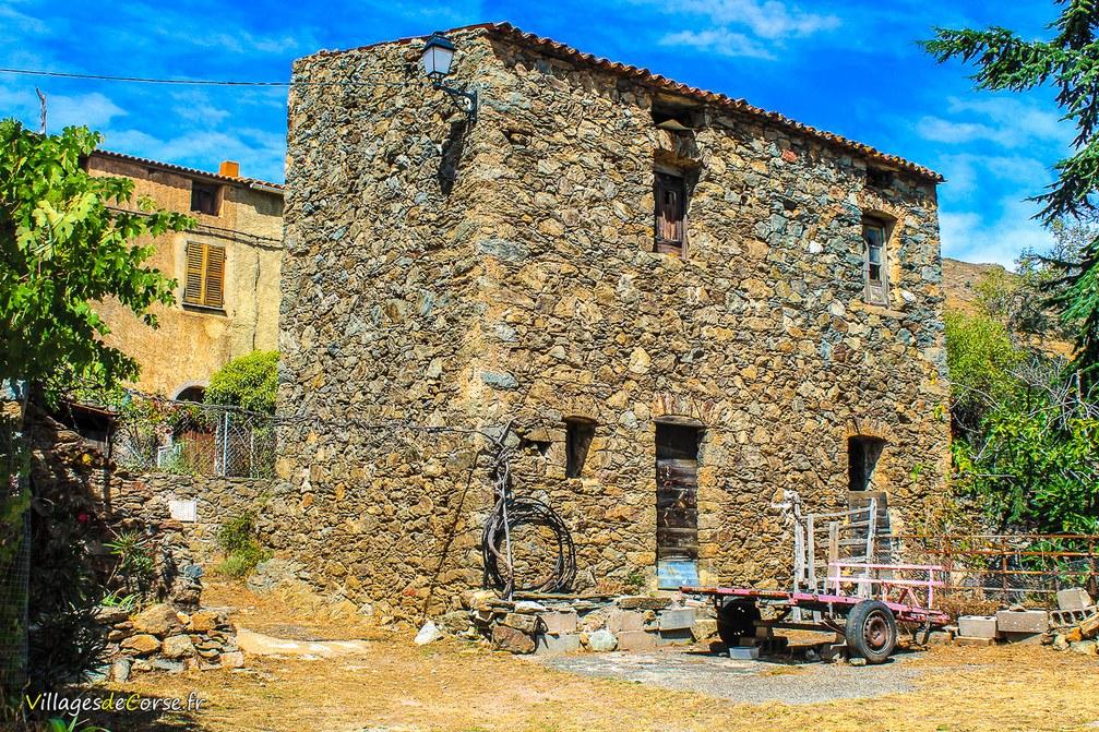 Vieille Maison - Vallica
