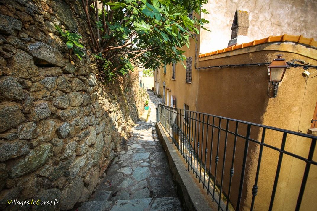 Escaliers - Zilia