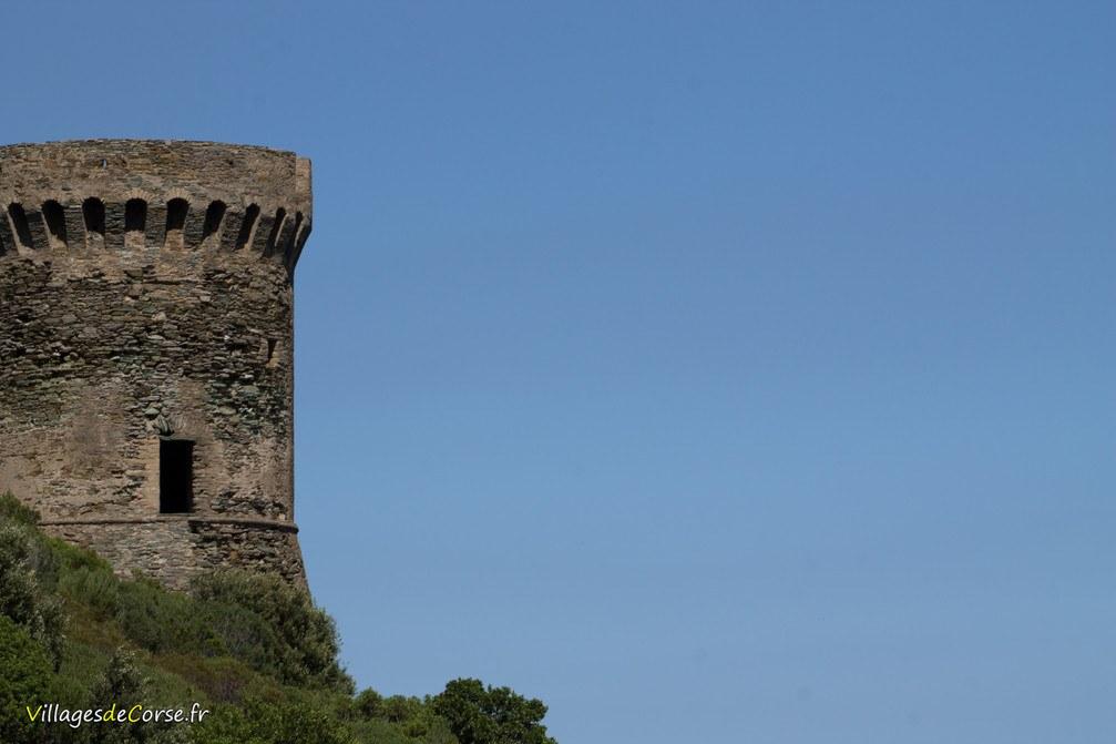 Tour Génoise - Losso - Cagnano