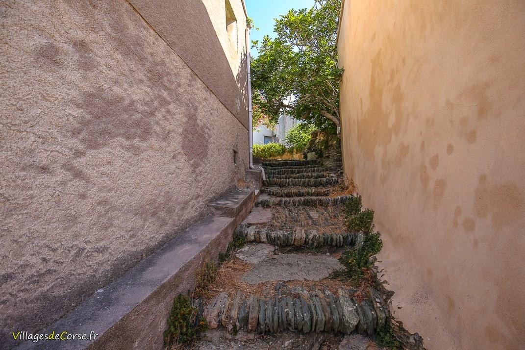 Escaliers - Centuri