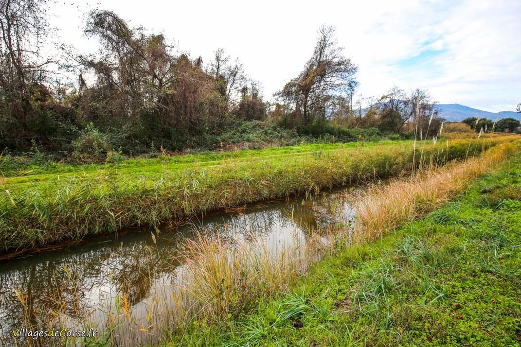 Ruisseau - Ciavattone - Venzolasca