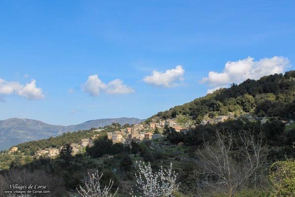 Village - Bisinchi