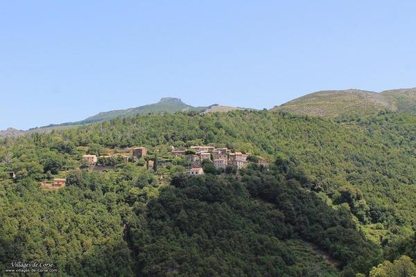 Village - Cambia