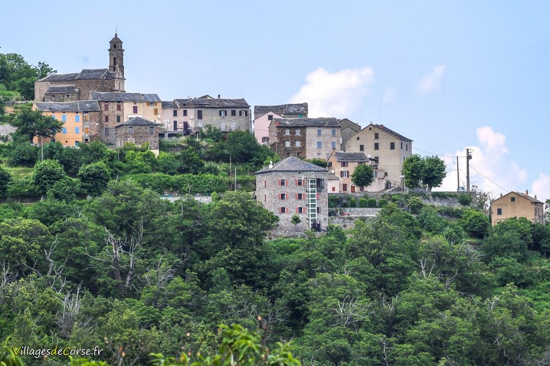 Dorf - Campana
