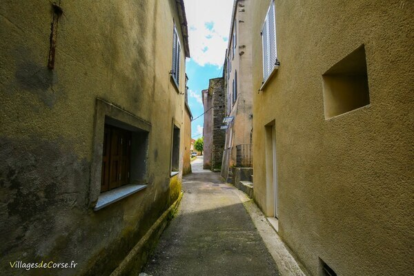 Alley - Campana