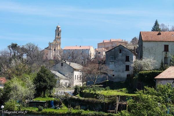 Village - Campile