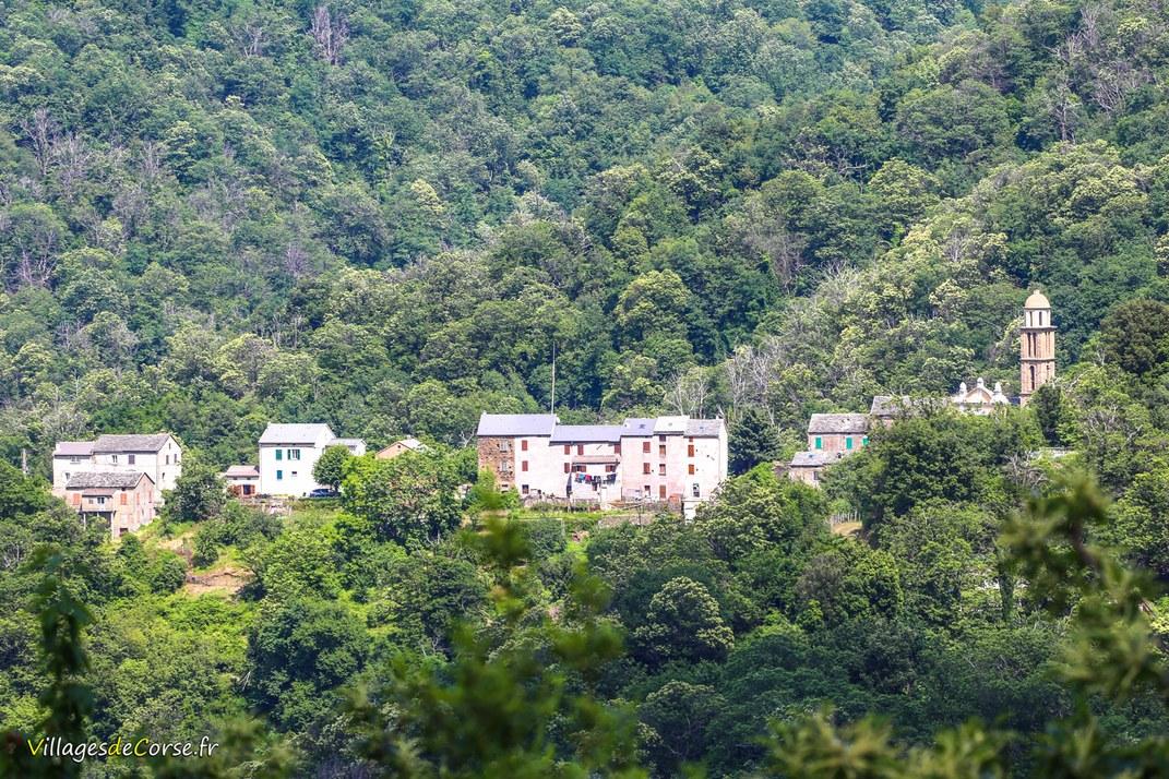 Village - Carpineto