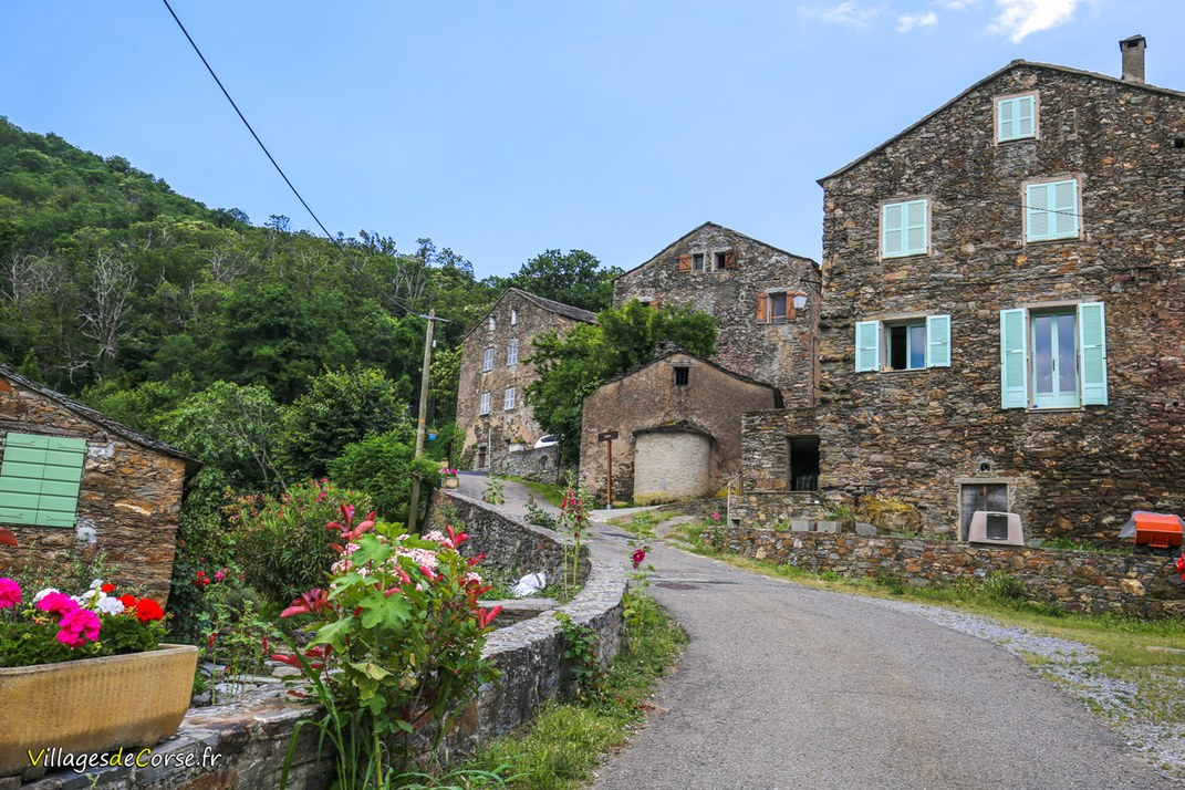 Village - Carpineto