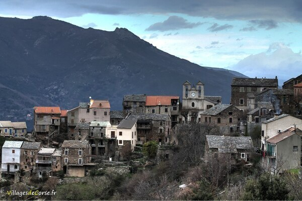 Village - Olmo