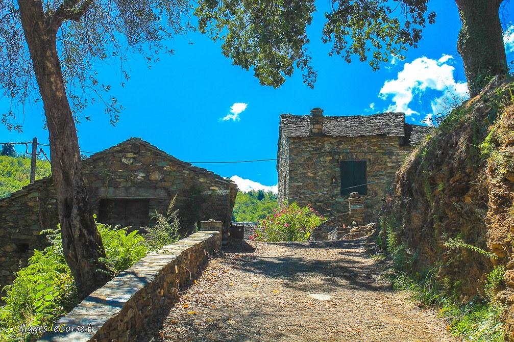 Maison - Poggio Marinaccio