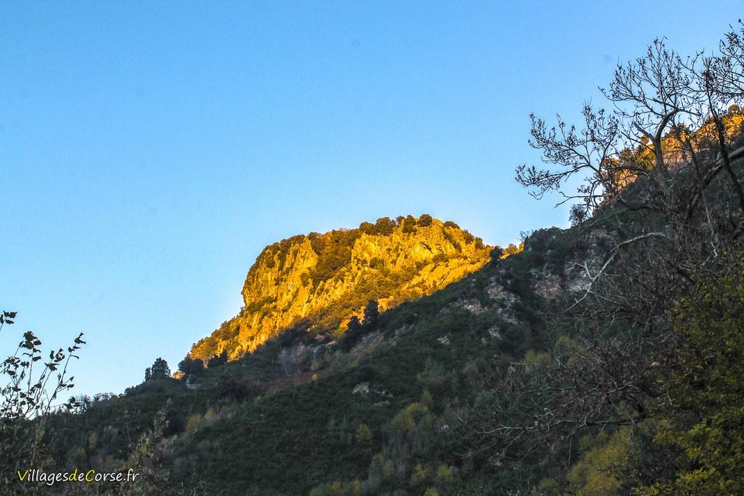 Montagne - Pruno