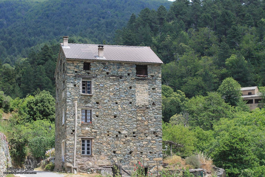 Maison en pierres - Saliceto