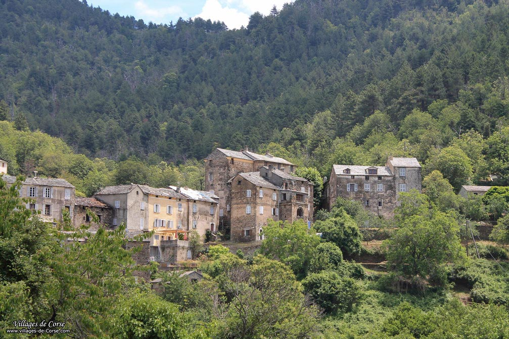 Village - Saliceto