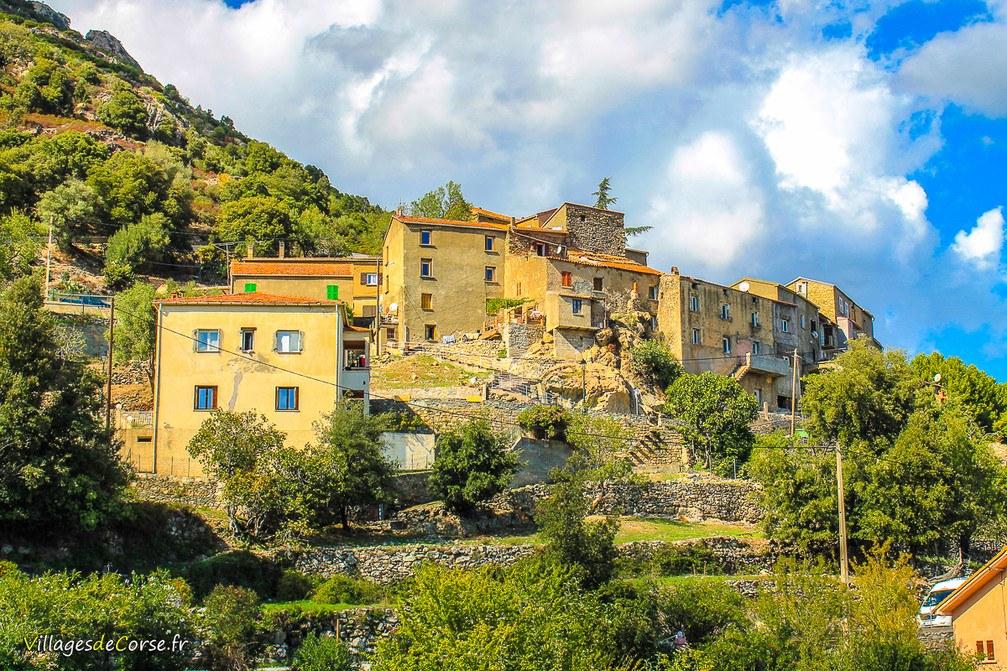 Dorf - Castirla