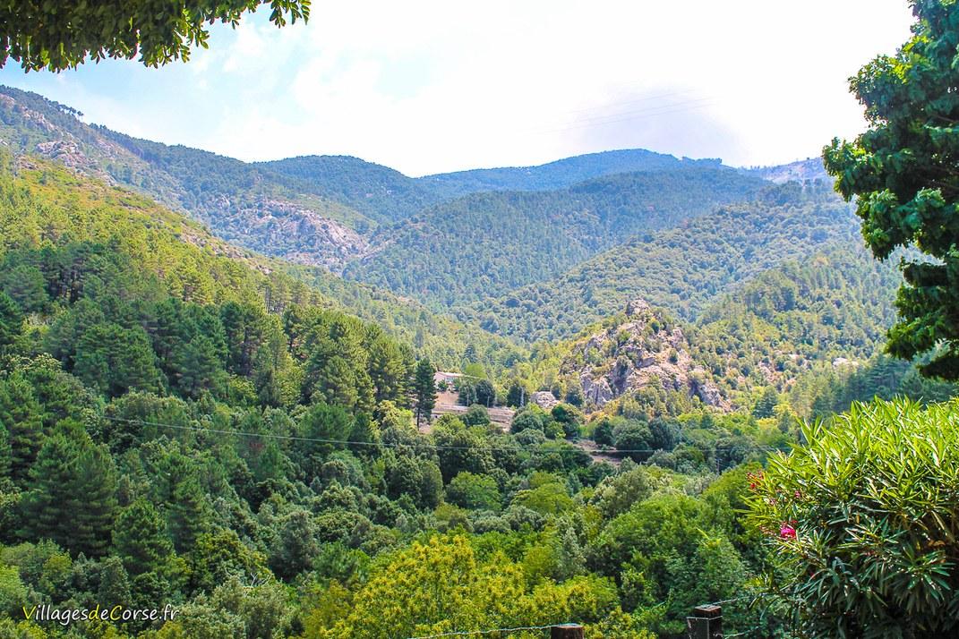 Montagne - Muracciole