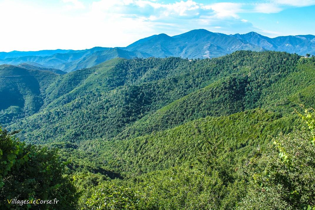 Montagne - Riventosa