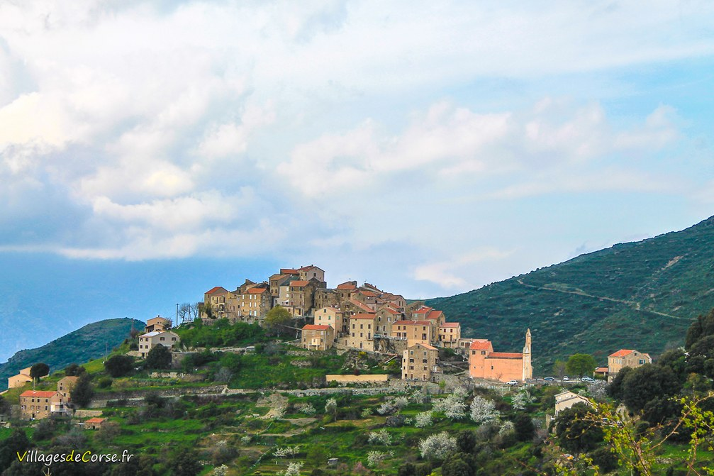 Village - Tralonca