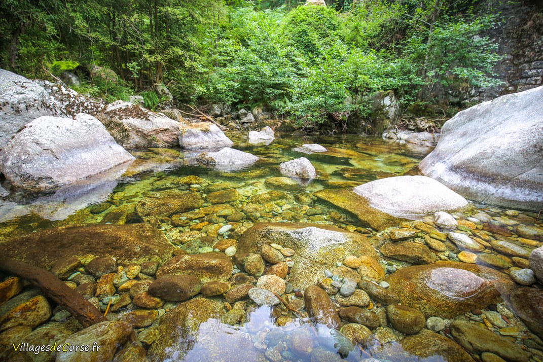 Rivière - Vechju - Vivario