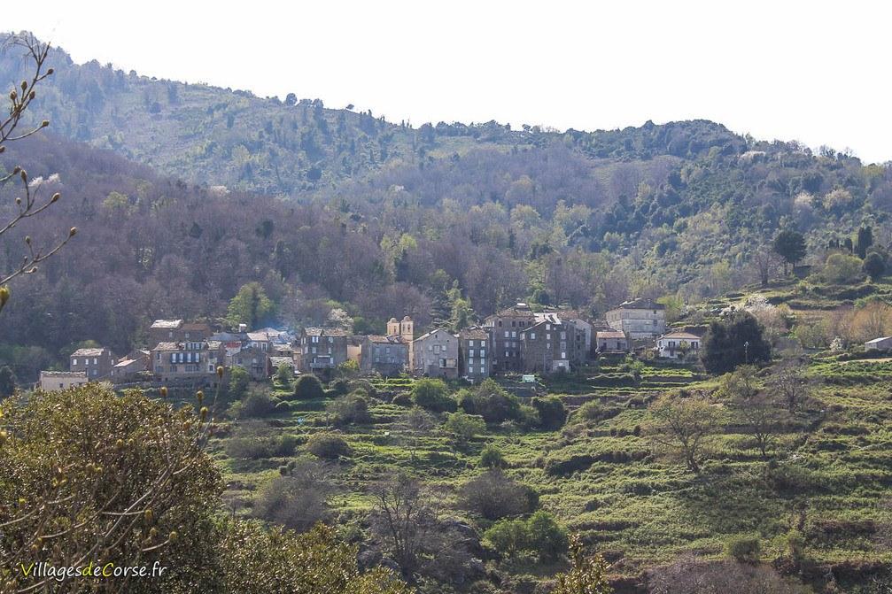 Village - Pero Casevecchie