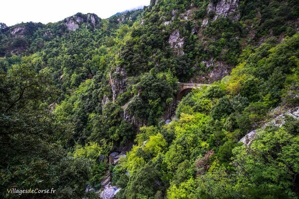 Montagne - San Nicolao