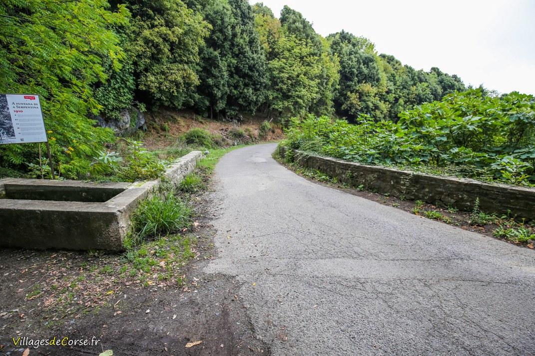 Straße - Santa Maria Poggio