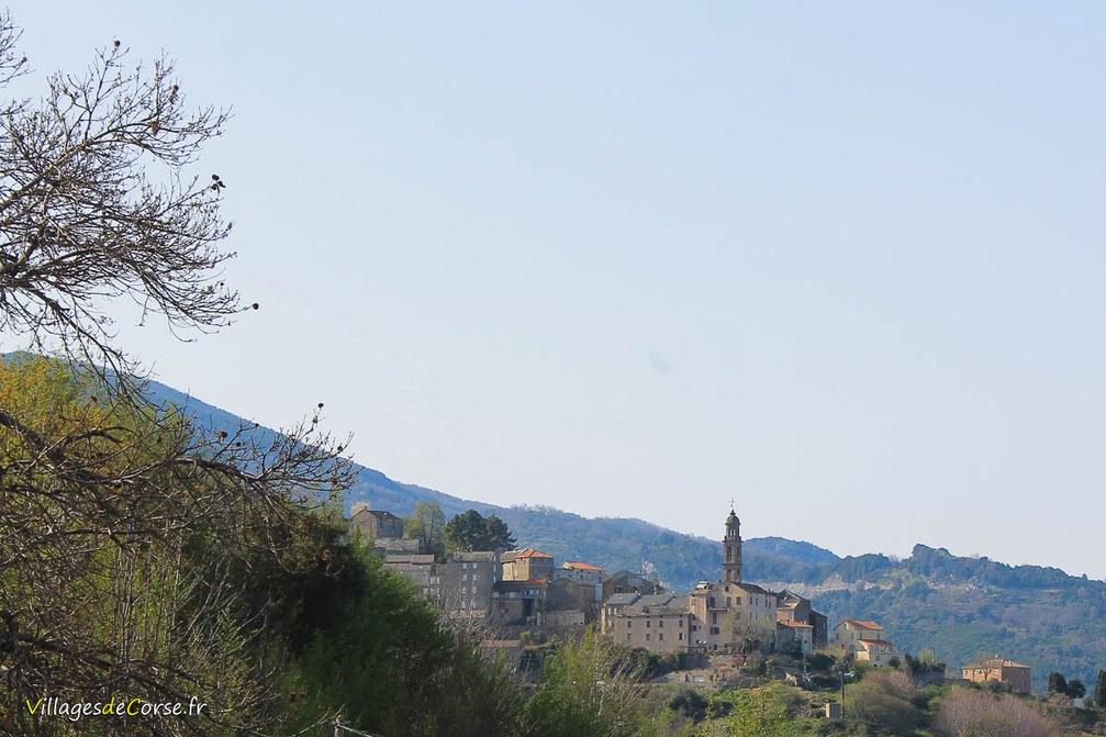 Village - Taglio Isolaccio