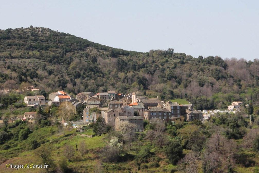 Village - Talasani